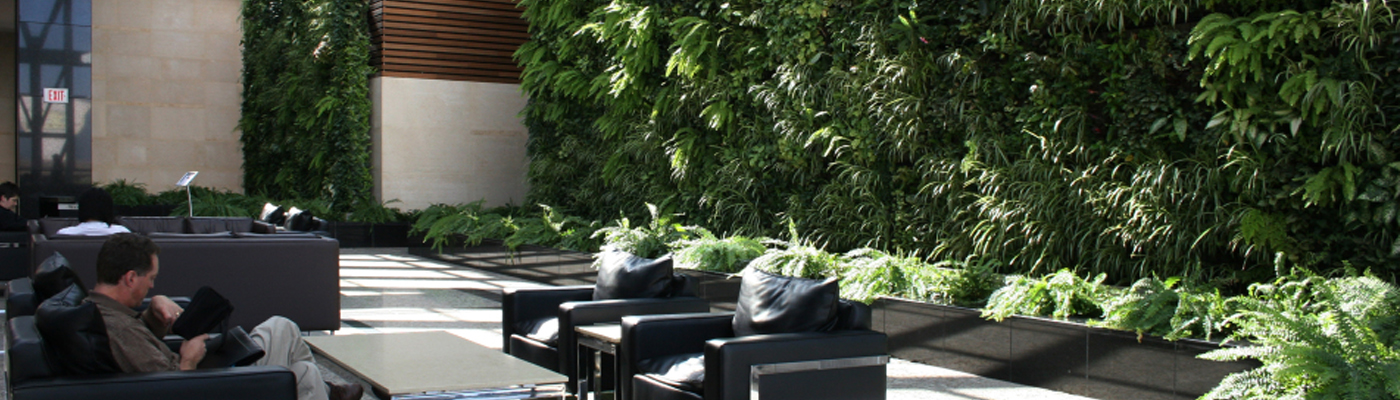 Cây xanh Sài Gòn